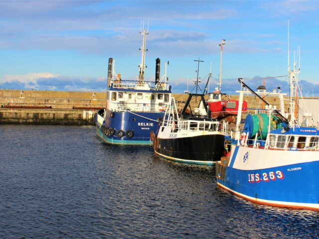 Land all UK fish in the UK, post-Brexit, says BPA